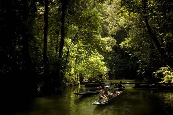 Travelers make the trip to Mulu Caves Sarawak with a short boat ride down the Melinau River amidst the lush green rain forest.